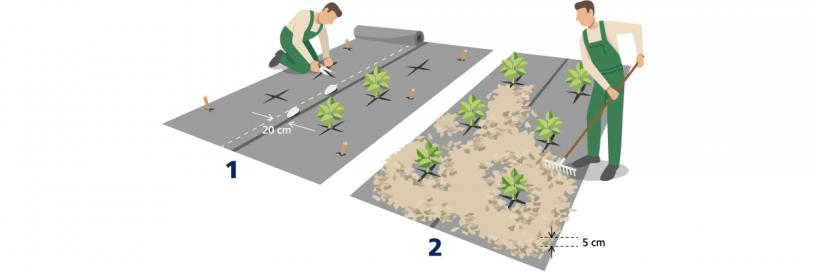Home and Garden - Installation WeedControl